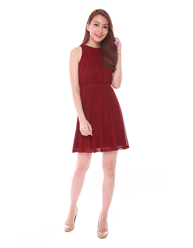 Paris Dress in Maroon